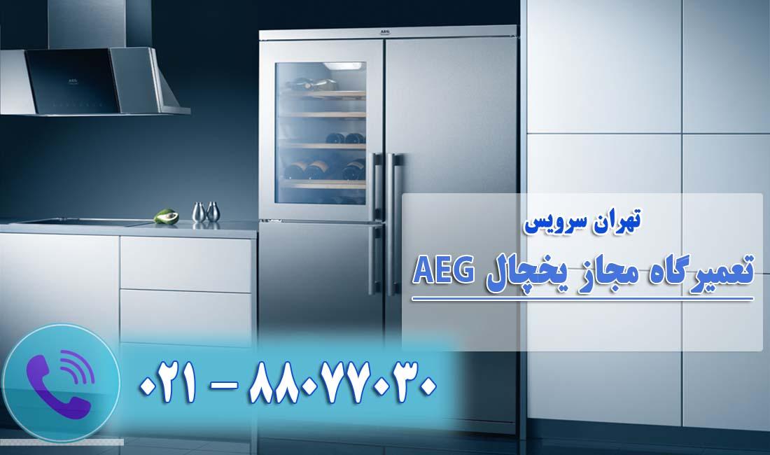 تعمیر یخچال فریزر آاگ(AEG)