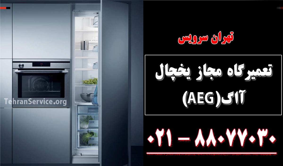 تعمیر یخچال آاگ(AEG)