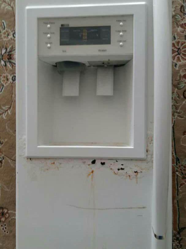 تعمیر پوسیدگی درب یخچال تهران سرویس