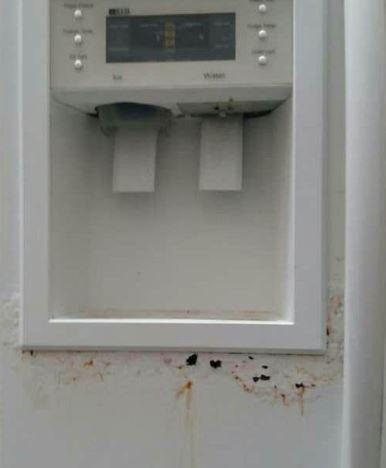 تعمیر درب یخچال ساید بای ساید